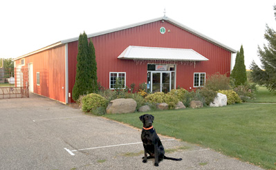 Our black lab lab in front of our new building!