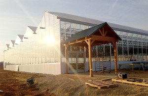 Commercial Glass - Greenhouse in Oregon, WI (close to Madison)