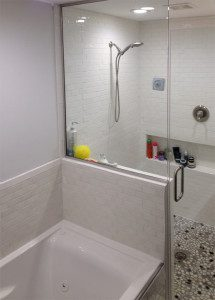 shower panel installed in Madison, WI open shower, tub outside